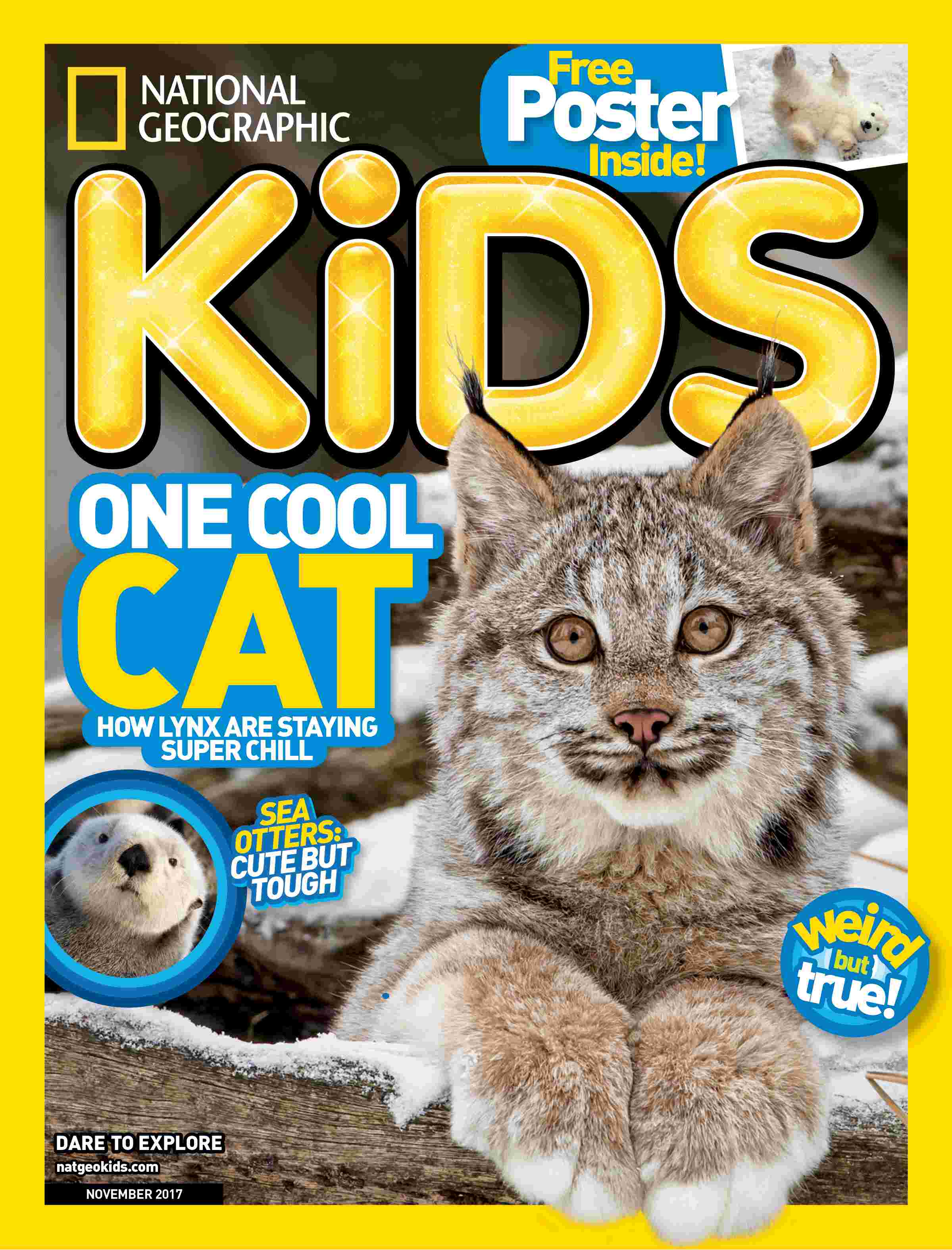 National Geographic Kids: magazine. : One cool cat